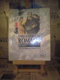 Silviu Angelescu - Limba si literatura romana manual pentru clasa a IX a