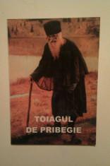 TOIAGUL DE PRIBEGIE - V. NICHIFOROV VOLGHIN foto