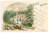 2566 - SINAIA , Prahova, winter, PELES tower, Litho - old postcard - used - 1899, Circulata, Printata