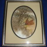 Impresionanta pictura realizata in acuarela pe carton de artista Donna Watson(1) - Pictor strain