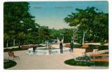1083 - SILISTRA, public garden - old postcard, - unused