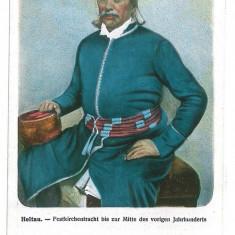 2186 - Sibiu, CISNADIE, Ethnic - old postcard - unused - Carte Postala Transilvania 1904-1918, Necirculata