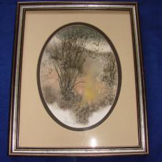 Impresionanta pictura realizata in acuarela pe carton de artista Donna Watson(2) - Pictor strain