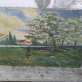 PICTURA IN ULEI PE PINZA, CIBANAS CU OI reducere - Pictor roman, An: 1943, Peisaje, Altul