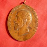 Medalie 40 Ani de Domnie Carol I, 1906, bronz, H= 4, 2 cm, nu are panglica - Medalii Romania