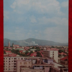 Vedere/Carte postala - RPR - Baia Mare - Carte Postala Banat dupa 1918