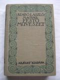 Pictura  maghiara  -  Szabo  Laszlo,  (limba maghiara)  260  pagini