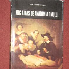 Mic atlas de anatomia omului - Dem. Theodorescu (1982) - Dictionar ilustrat