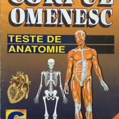 CORPUL OMENESC - TESTE DE ANATOMIE