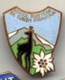 INSIGNA OJT OFICIUL JUDETEAN DE TURISM PRAHOVA