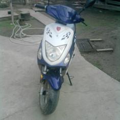 vand scuter rich