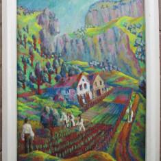 Peisaj de pe Cerna - semnat  Iulian Bebe Cojocaru