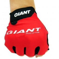 Manusi ciclism GIANT - Half finger GEL - Echipament Ciclism Altele, Manusi bicicleta