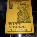 Plante medicinale in prezent