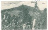 2759 - VATRA DORNEI, Bucovina, Bistrita, pasul Tihuta - old postcard - unused