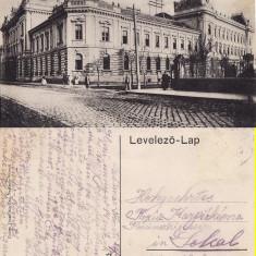 Satu Mare - 1916 - Carte Postala Maramures 1904-1918