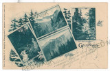 2776 - Litho, SIBIU, NEGOIU, Surul - old postcard - used - 1901, Circulata