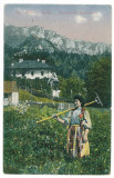 2740 - Ethnic woman - old postcard - unused