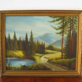 Tablou peisaj montan - ulei pe panza - Pictor roman, Peisaje
