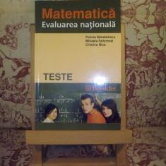 Felicia Sandulescu - Matematica evaluare nationala