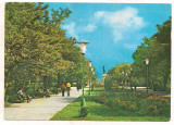 % carte postala (marca fixa )-TELEORMAN-Zimnicea -parcul, Circulata, Printata