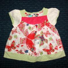 Bluzita de panza de vara cu flori, marca Monsoon, fete 2-3 ani, Culoare: Multicolor