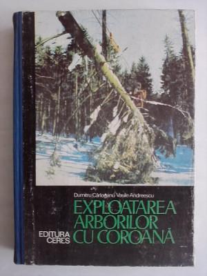 Exploatarea arborilor cu coroana - D. Carloganu (silvicultura) / R1S foto