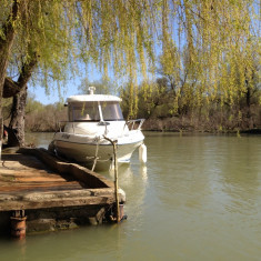 Vand barca cu motor Quicksilver Pilothouse 540, An fabricatie: 2008, 500 Km, Exterior, Benzina, Numar motoare: 1