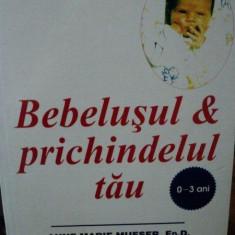 BEBELUSUL & PRICHINDELUL TAU-ANNE MARIE MUESER