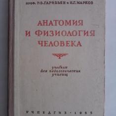 Anatomie / carte in limba rusa / R5P1F