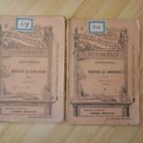 ALEXANDRU DEPARATEANU--DORURI SI AMORURI 2 VOL.-1896 - Carte veche