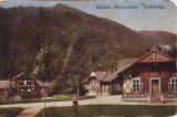 Ok-1434- Romania, Salutari Maramures, Erdeszvolgy c.p. necirculata 1918: Vile, Fotografie