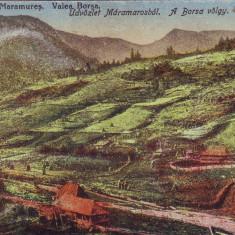 Ok-1432- Romania, Maramures carte postala necirculata 1918: Valea Borsa, Fotografie
