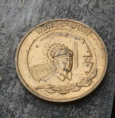 Medalie intreprinderea miniera Uricani foto