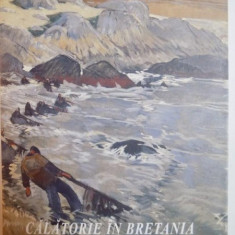 CATALOG, CALATORIE IN BRETANIA, ARTISTI FRANCEZI SI ROMANI DESCOPERIND CULTURA BRETONA - Carte Istoria artei