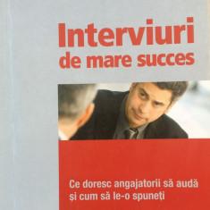 INTERVIURI DE MARE SUCCES - Ros Jay - Carte Resurse umane