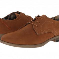 Pantofi Steve Madden Fixate | 100% originali, import SUA, 10 zile lucratoare - Pantofi barbat
