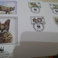 WWF FDC Burundi 1992 serie Pisici