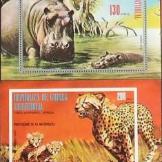 GUINEEA EQ. - ANIMALE AFRICA, 2 S/S DANTELATA SI NEDANTELATA, NEOBLIT. - GEQ 051