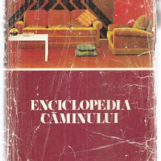 (C6098) ENCICLOPEDIA CAMINULUI - Carte amenajari interioare