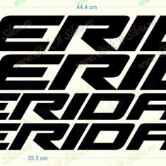 Set Merida - Model 2_Sticker Bicicleta_Tuning _ Cod: SET-014