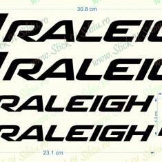 Set Raleigh - Model 1_Sticker Bicicleta_Tuning _ Cod: SET-016