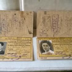 COLECTIE CARNETE DE IDENTITATE PENTRU CALATORIE CFR DIN 1940-41-47 TIMBRATE - Pasaport/Document, Romania 1900 - 1950
