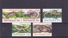 Fauna ,serpi,soparle,Noua Zelanda. foto