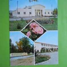 HOPCT 11140 TICLENI -JUDETUL GORJ [CIRCULATA] - Carte Postala Oltenia dupa 1918, Printata