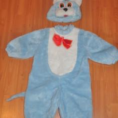 Costum copil IEPURE. Ideal pentru petreceri, serbari. Petrecere Halloween - Costum copii, Marime: XS, Culoare: Albastru