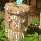 Decoratiuni festive - Decoratiuni nunta
