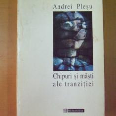 Andrei Plesu Chipuri si masti ale tranzitiei Bucuresti 1996