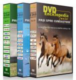 Enciclopedia Junior - Pasi spre Cunoastere - Colectie 26 DVD-uri Educative, Romana
