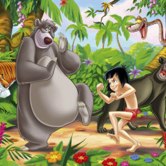 Desene Animate DUBLATE IN LIMBA ROMANA - Film animatie disney pictures, DVD